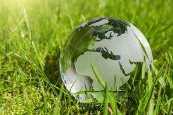 Symbolfoto zur Nachhaltigkeit: Eine gläserne Weltkugel liegt im grünen Gras