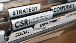 CSR im Handapparat