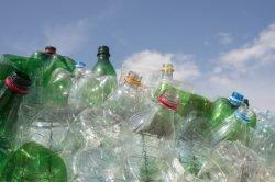 Der Plastikmüll ist eins der größten Umweltprobleme.