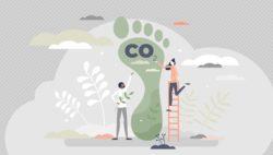 Symbolbild für Klimaschutz im Alltag: eigene CO2- Bilanz