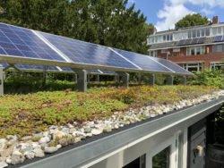 Klimaanpassung in Kommunen z.B. durch Begrünung von Hausdächern und -fassaden.