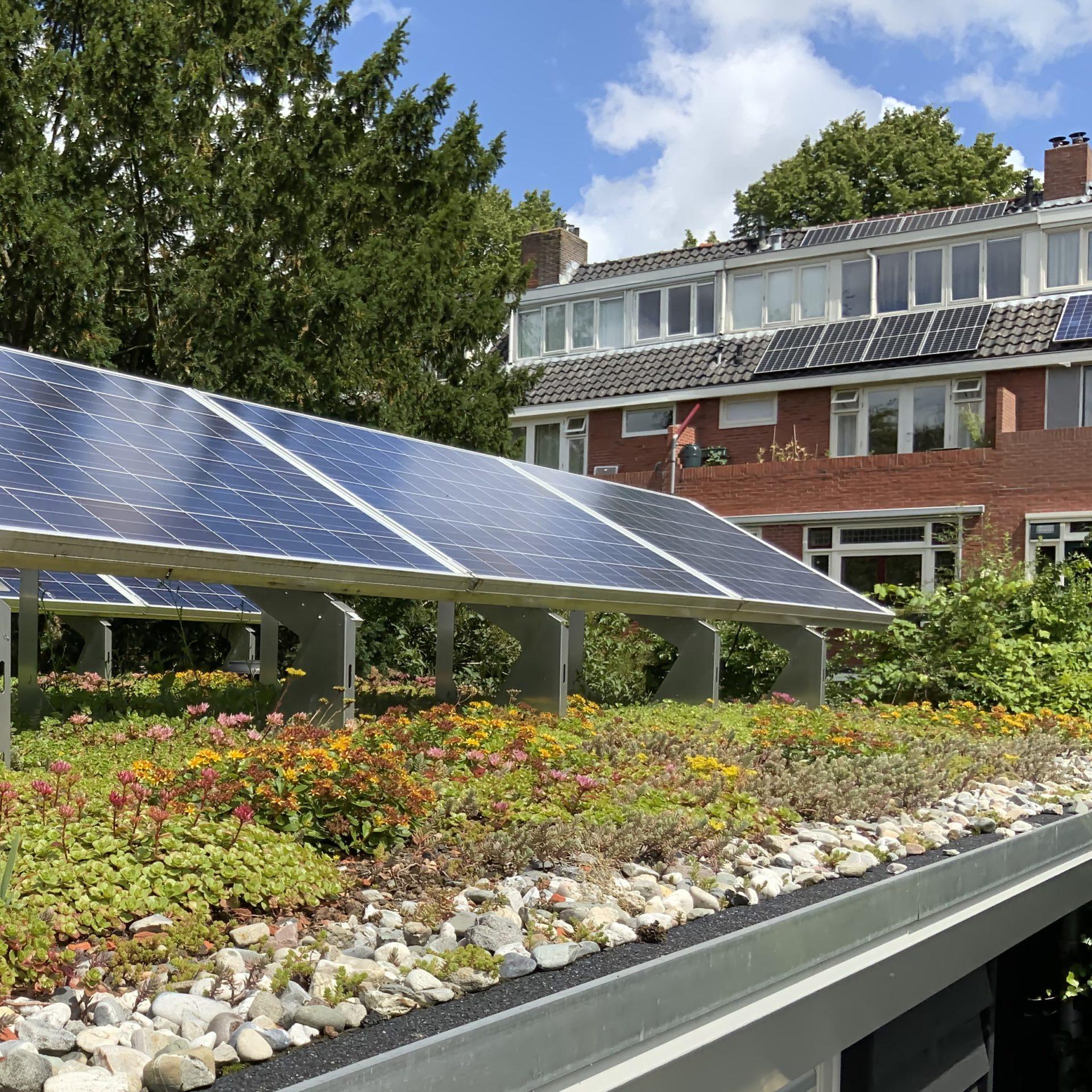 Symbolbild für Klimaanpassungs-Strategien in Kommunen.